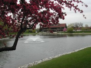 Lake Hinsdale Village