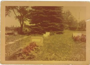 Hinsdale Animal Cemetery, 1953
